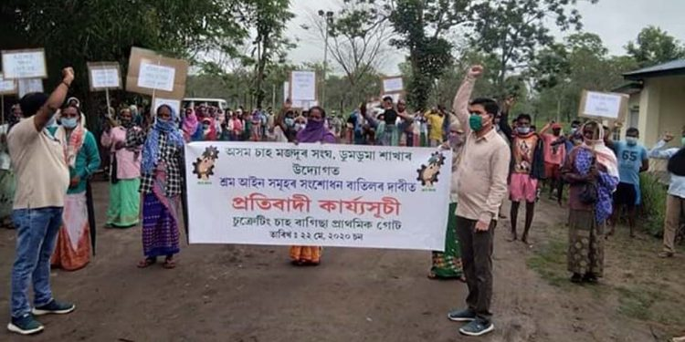 Tea workers protest
