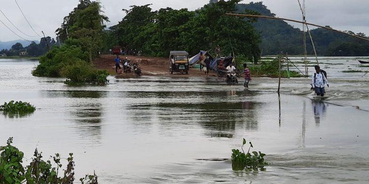 Flood-hit Pobitora Wildlife Sanctuary. Image: Chandan Kumar Duarah