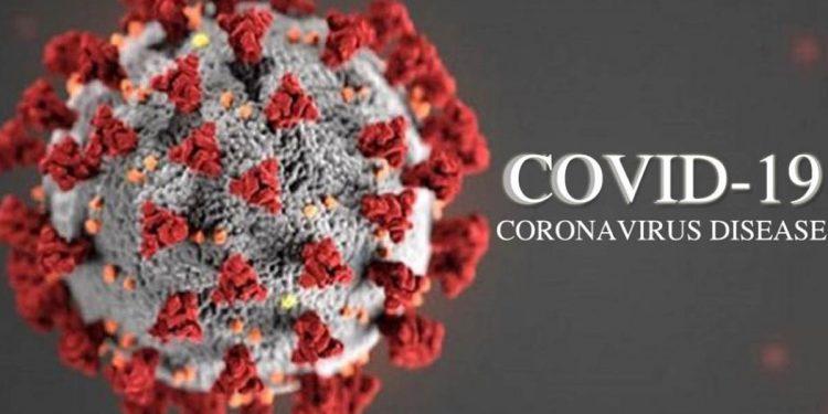 Assam COVID-19 deaths