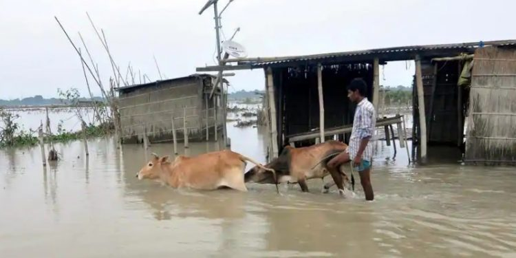 Assam flood situation further deteriorates, four more dead 1
