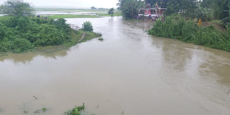 Assam: Two members of a family, driver feared dead after vehicle falls into river in Dhemaji 1