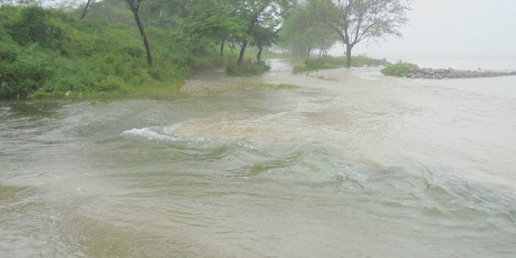 Siang river at Kolomighat (Pasighat) in Arunachal Pradesh on July 20, 2020. Image: Northeast Now