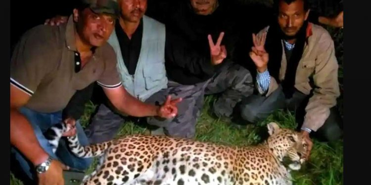 Hunters posing with the leopard they shot dead in Almora