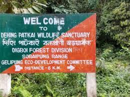 Assam to upgrade Dehing Patkai Wildlife Sanctuary into national park 1