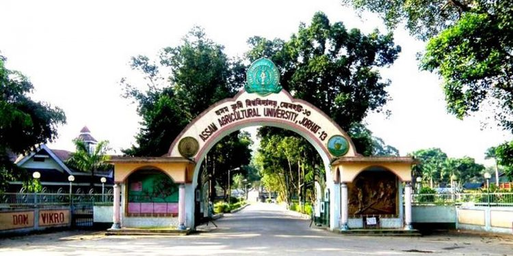 Assam Agricultural University.