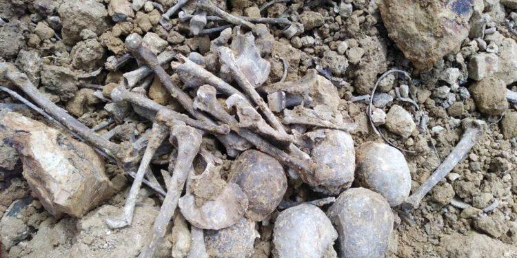 Century old human skulls, bones, ornaments recovered in Mizoram landslide debris 1