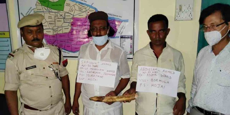 Two persons arrested with an elephant tusk in Hojai. Image: Northeast Now