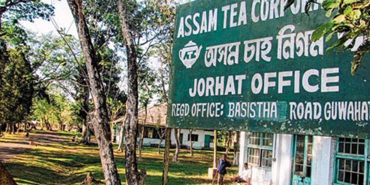 Assam Tea Corporation Limited