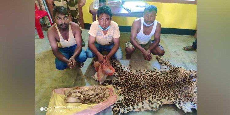 Three leopard poachers in police custody. Image credit: Twitter