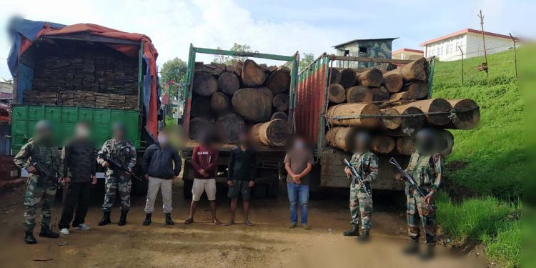 Illegal timbers seized by Assam Rifles