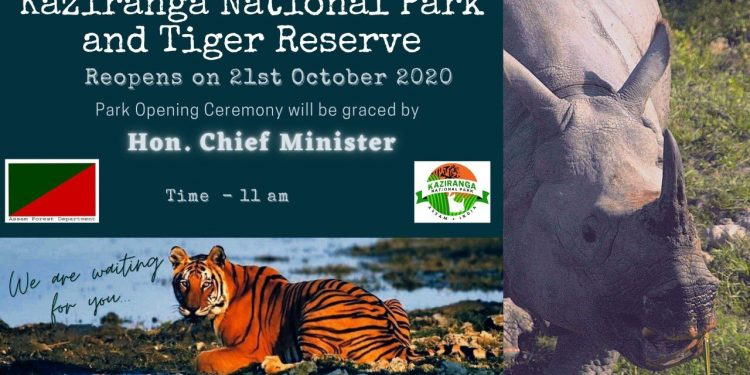 Kaziranga National Park to reopen for tourists on Oct 21 after a gap of seven months 1
