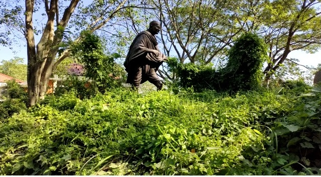 Mahatma Gandhi statue and landscaping there is absolutely in dilapidated condition. (File image)