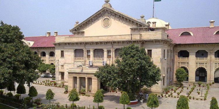 Allahabad HC reunites interfaith couple, says woman has 'choice to live life on her own terms' 1