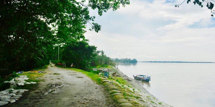 Assam: Aaranyak demands immediate halt to resort construction work at Nimati-Kokilamukh area 1