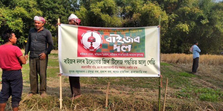Raijor Dal advisor Tridip Dutta said that the first group of four farmers has been initiated in this method at Dulia Gaon in Teok constituency. Image credit: Pranjyoti Nath