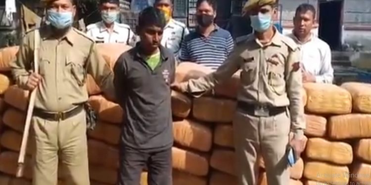 Tripura: Ganja worth Rs 1 crore seized, 2 persons arrested 1