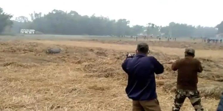 Assam: Forest guards gun down Kaziranga National Park wild buffalo after it kills 2 men in Biswanath 1