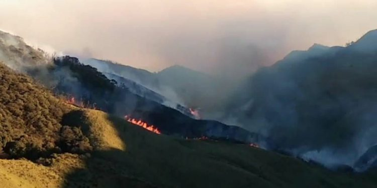 Manipur: 4 Air force helicopters rushed to Dzuko Valley to douse wildfire 1