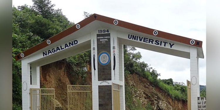 Image credit - kohima.nagalanduniversity.ac.in