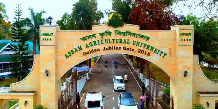 Delegation of diplomats from 10 nations visit Assam Agricultural University 1