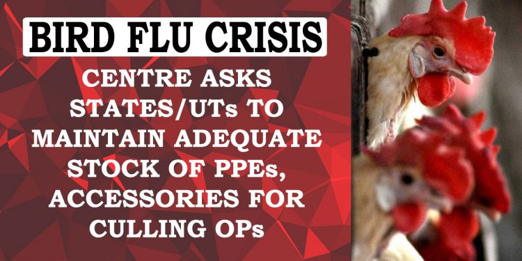 Bird flu crisis on the rise: 3 more States confirm outbreak, Centre mulls culling operations 1