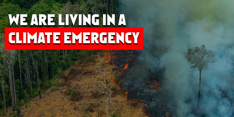 Climate Emergency in Popular Media 1