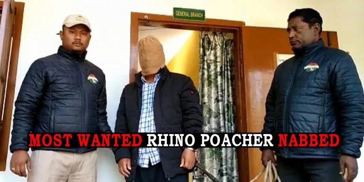 Assam's 'most wanted' rhino poacher arrested in Arunachal Pradesh 1