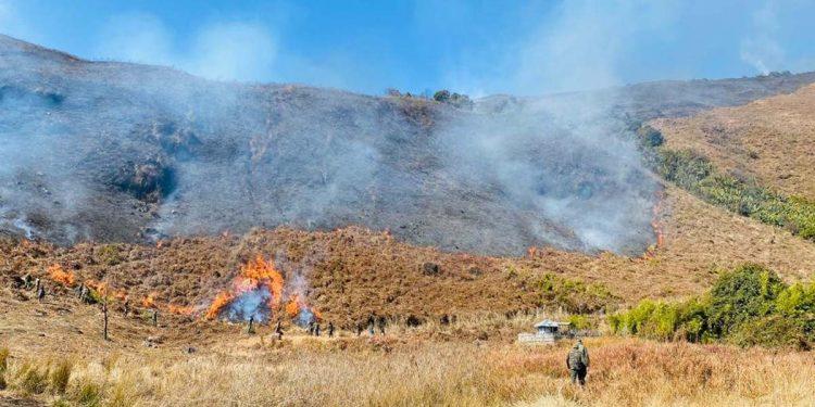 forest fire in Arunachal