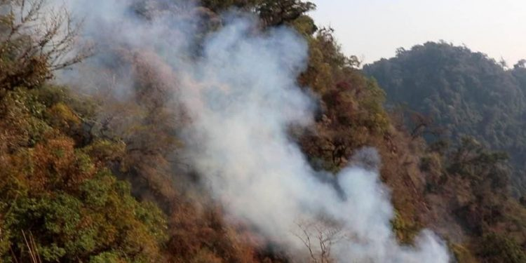 Manipur CM seeks Centre's help for dousing fire at Shirui peak 1