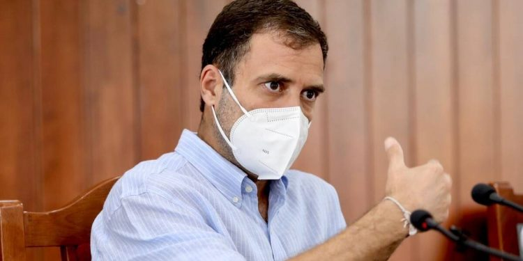 Suspend political work, help people: Congress leader Rahul Gandhi tells party workers as COVID-19 mayhem continues 1