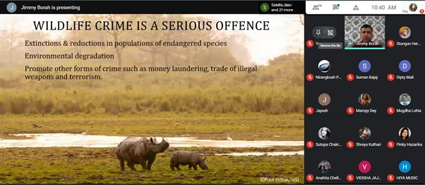 Animals in Assam