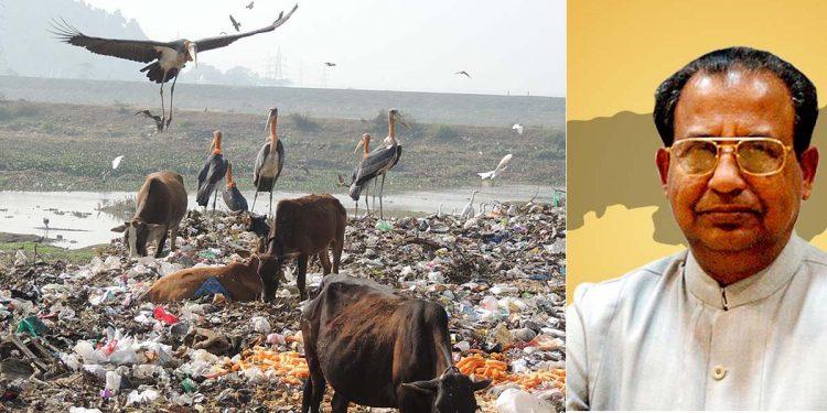 Cow and Jagdish Mukhi