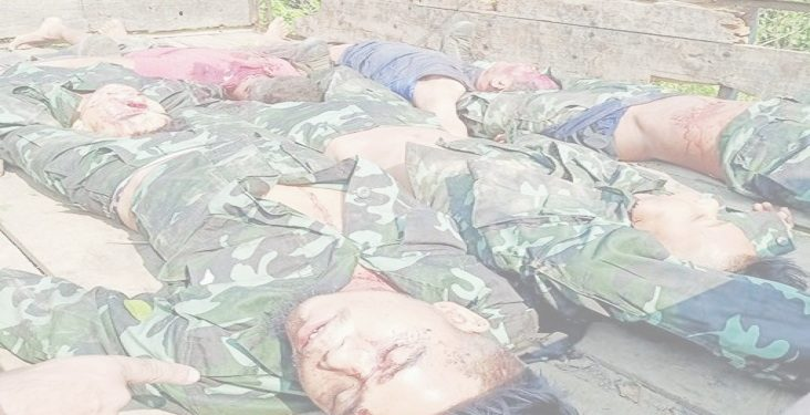 Assam: Six DNLA cadres killed in encounter with security forces in Karbi Anglong 1