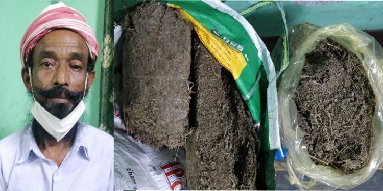 Assam: Over 4 kgs of ganja recovered, one arrested in Darrang 1