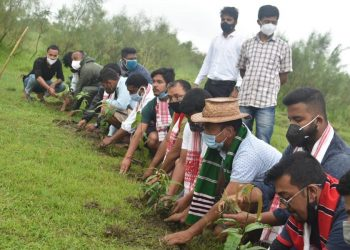 AASU plantation programme