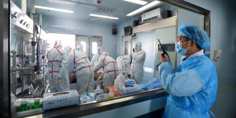 China reports world's first human case of H10N3 bird flu strain 1