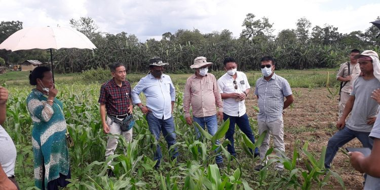 Nagaland agriculture and allied departments assess ground situation in drought-hit villages 1