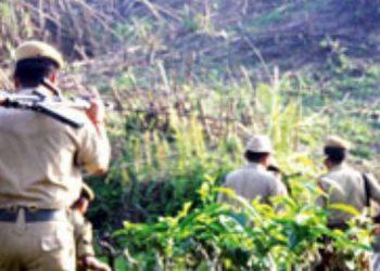 Inter-state boundary row: Assam sets up forest camp at Dissoi Valley along Nagaland border 2