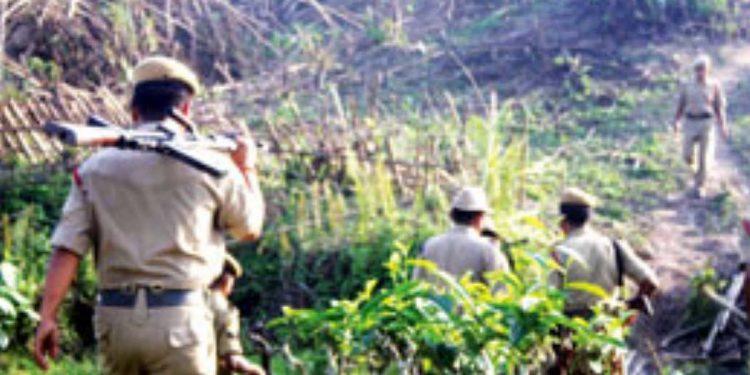Inter-state boundary row: Assam sets up forest camp at Dissoi Valley along Nagaland border 1