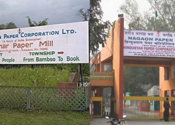 Nagaon Paper Mill Cachar Paper Mill