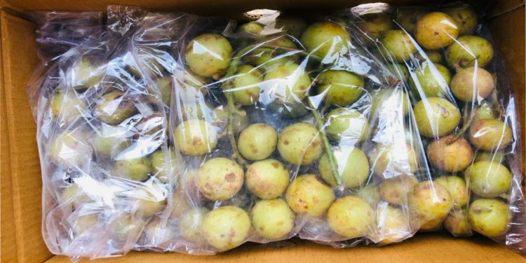 Burmese grapes, known as Leteku in Assam, exported to Dubai 1