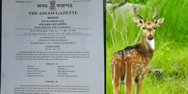 It's official now: Raimona and Dihing Patkai notified as National Parks in Assam 1