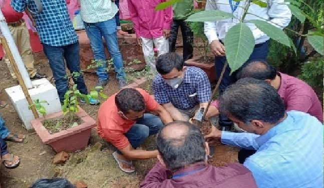 Assam: World's first genetically modified rubber plant planted in Guwahati 1