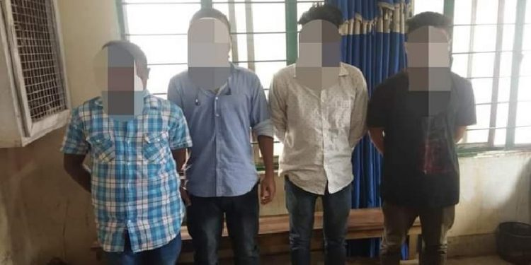 Assam: Tokay Gecko seized in Tinsukia, four held 1
