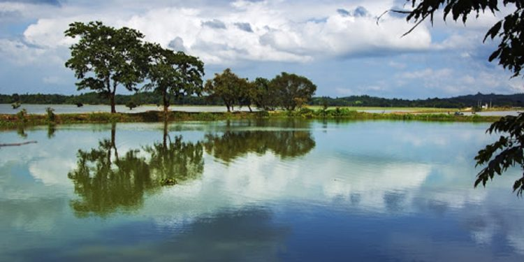Assam Government decides to geo-tag all ponds in State 1