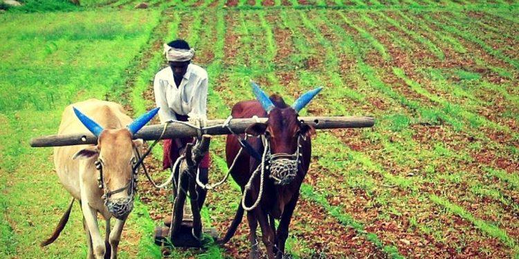 Assam Jatiya Parishad demands CBI probe into PM-KISAN 'scam' 1