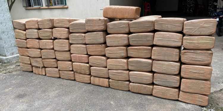 Assam: Ganja consignment worth Rs 1 crore recovered in Kokrajhar 1