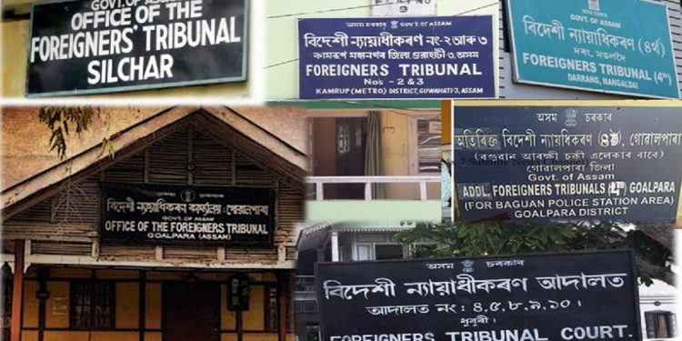 Assam: Rights' body questions functioning of FTs after Gauhati HC set asides order declaring man foreigner 1
