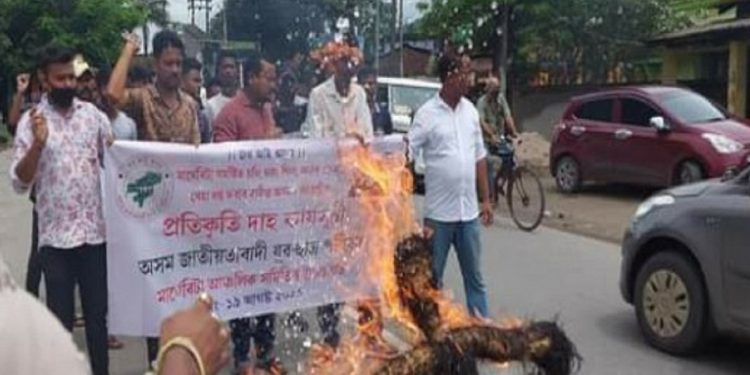Timber smuggling: AJYCP protests, burns effigy of Assam Forest Minister 1