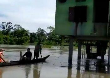 Assam floods: Over 150 forest camps in Kaziranga National Park reel under water 4